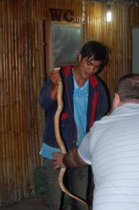 Ужин из змеи. Ритуал с коброй во Вьетнаме