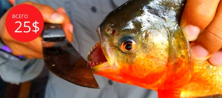 Рыбалка на пиранью в Муйне